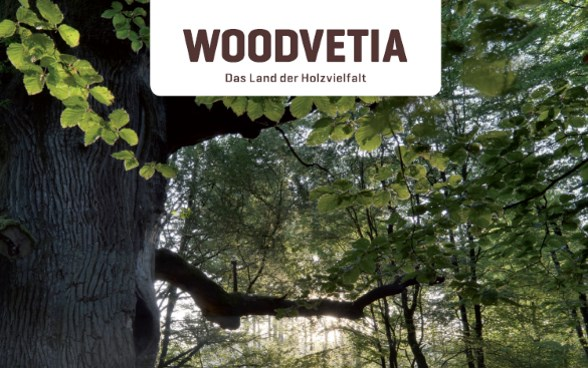 #WOODVETIA-Figuren an der Bad Ragartz