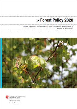 Cover Forest Policy 2020
