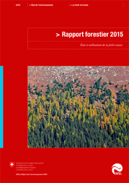 Cover Rapport forestier 2015