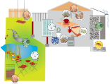 Illustration biocides